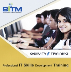 Professional ICT Skills Development Training