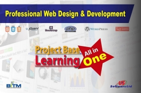 Professional Web Design & Development