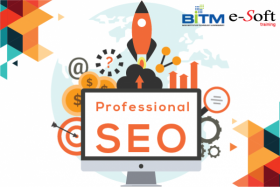 Professional SEO(1st batch)