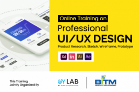 Online Training on Professional UI/UX Design