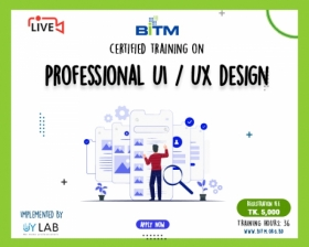 Online Training on Professional UI/UX Design